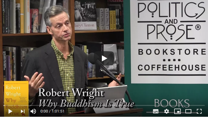 2020-05-03 16_18_51-Robert Wright, _Why Buddhism Is True_ - YouTube